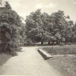 Pohled od rampy k hl. cestě