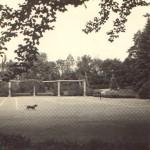 Hřiště s kurtem a psem majitelů
