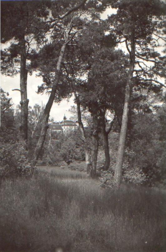 Druhý pohled z parku