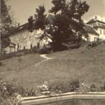 Pohled na zámek od bazénu